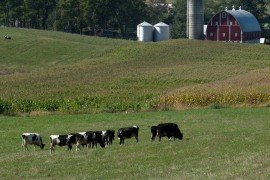 Business Transitions: Family Farm and Business Succession Planning