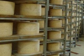 Cleaning and Sanitizing Wood Boards for Cheese Aging