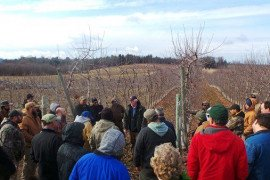 John Wall, author of How to Build Orchard and Vineyard Trellises, explains the key components of a strong orchard support system. Photo: Tara Baugher, Penn State