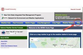 Use the 'Help' link in our website navigation bar.