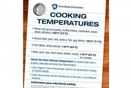 Cooking Temperatures Magnet
