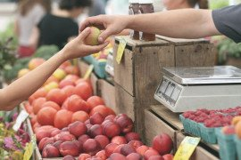 Food for Thought: Eight Tips for Making Good Choices at Farmers Markets