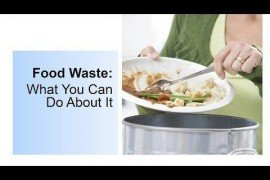 Food Waste: What You Can Do About It