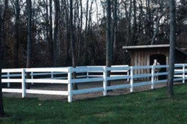 Paddock with Run-in shed