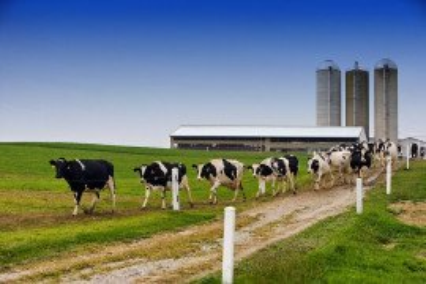 Pennsylvania Farm-A-Syst Worksheet 5: Milkhouse Waste Management