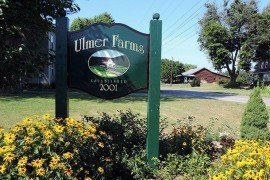 Ulmer Farms was started in 2001 by Seth Ulmer. Photo: Francesco Di Gioia, Penn State