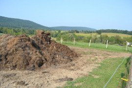 Composting is a popular option for product managers to use for mortality