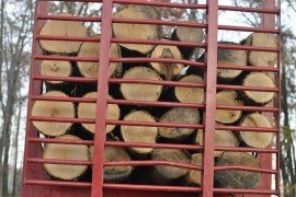 Timber Prices: 10-year Summary of Price Trend Percentages