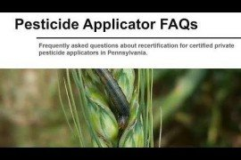 Pesticide Applicator FAQs