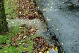 Taking care of areas of erosion along driveways or sidewalks can go a long way to help water resources (Photo: Jennifer Fetter, Penn State)