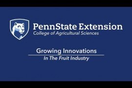 Growing Innovations in the Fruit Industry