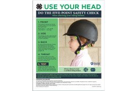 Use Your Head: Helmet Poster