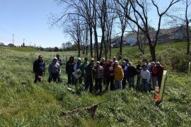 Volunteers planted 350 trees with a homeowner's association near Mount Joy, PA on a Saturday morning in April. (Photo: Jenn Fetter, Penn State)