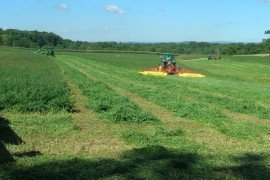 Wide Swath Drying for Haylage and/or Dry Hay