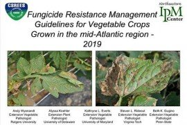 2019 Fungicide Resistance Management Guidelines for Vegetable Crops