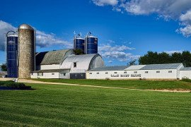 COVID-19 Stimulus Benefits for Dairy Industry Farmers and Small Businesses Webinar