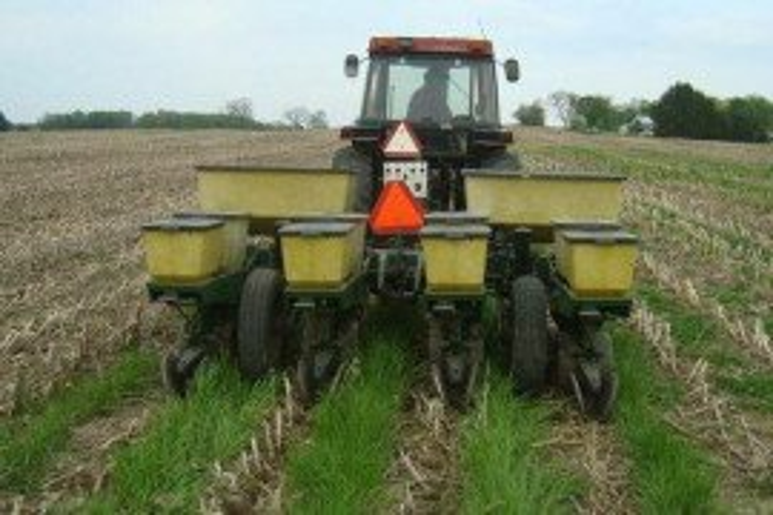 Planting corn in an interseeded corn stubble field.