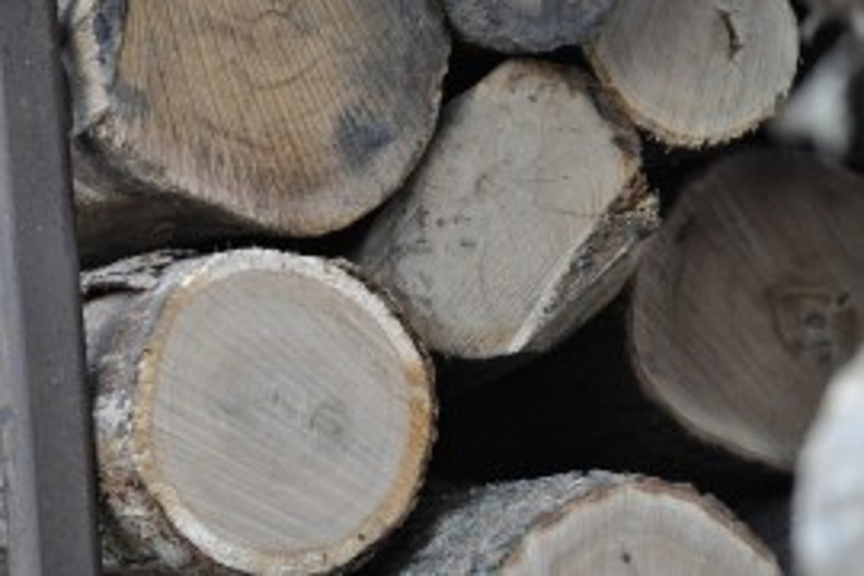 Timber Market Report: 2016 3rd Quarter
