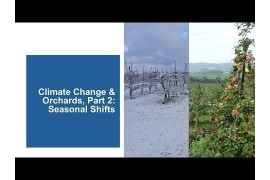 Climate Change and Orchards, Part 2: Seasonal Shifts
