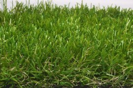 Survival of Staphylococcus aureus on Synthetic Turf