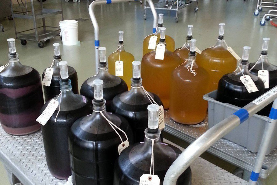 Production Tips for the Home Winemaker