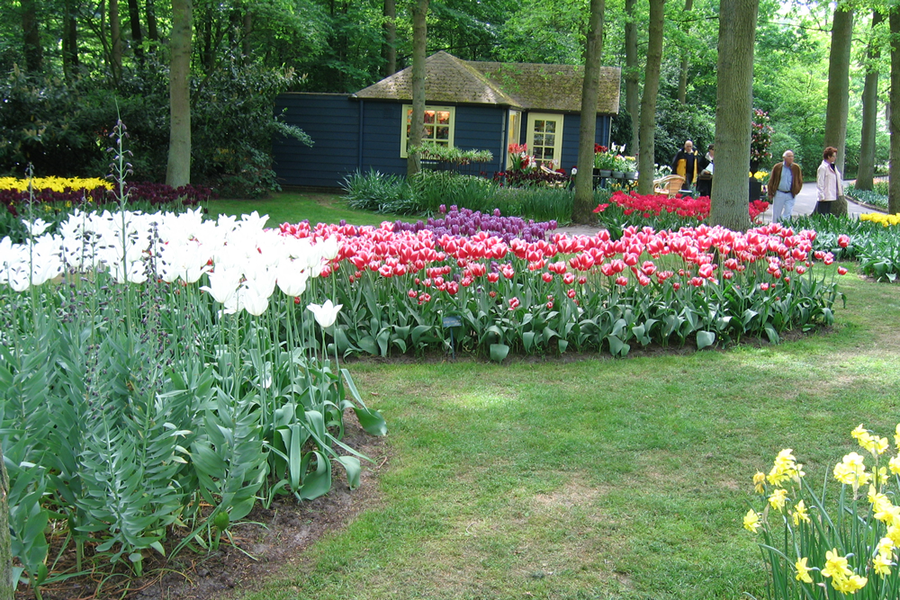 Get Started in the Landscape, Lawn, Nursery and Greenhouse Businesses