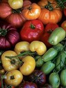 Heirloom Plant Varieties Provide More Than a Good Harvest or Beautiful Blooms