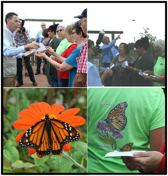 Monarchs are released by visitors to begin their journey to Mexico.