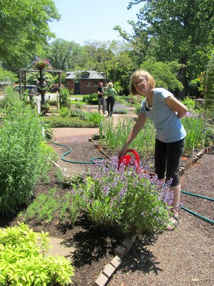 Master Gardener Lois Fischer in the Edible Landscape Garden