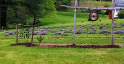 Gardens at Humming Hill Lavender Farm