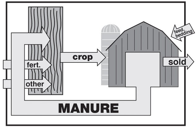 A schematic of the farm material movements for a crop and livestock farm that are influenced by nutrient management decisions.