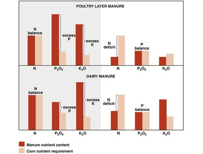 Balancing P and N Needs with Manure