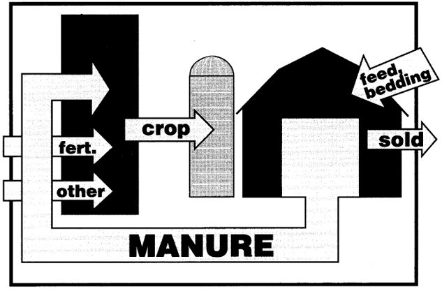 The potential pathways for farm material movement on a modern crop and livestock farm with primarily ruminant animals